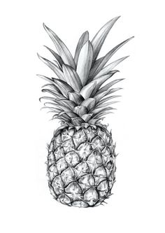 Pineapple Art Print by Sibling & Co