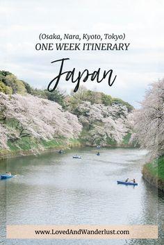 one week japan itinerary - osaka, kyoto, nara, tokyo Asia Travel, Japan Travel, Tokyo To Kyoto, Skiing In Japan, Japan Trip, Travel Bugs, Nara, Places To Go, Traveling