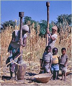 Pounding grain/most likely millet Ambo, Ovambo, Ndonga