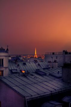 :: paris ::  I saw this and am in shock. I have had a reoccurring dream and I am staying in a hotel room with is view. It smells of bread and lavender in my dream.