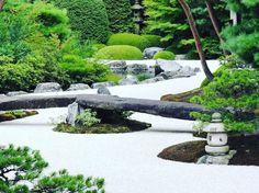 No.1 Japanese garden in the world that settled in Adachi museum of art in Shimane prefecture, Japan #japanesegarden #日本庭園 #worldsbest #garden #beautiful #adachimuseum #足立美術館 #nikon #nikonp600 #p600
