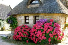Brittany Thatched Cottage.  This is a really cool blog site. Check it out! You'll be glad you did.