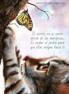 #reflexión #frase
