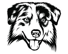 Sweet Australian Shepherd Face decals & stickers for car windows, trucks & more in small & large sizes customized. Apply this custom vinyl Sweet Australian Shepherd Face sticker indoors or outdoors. Red Merle Australian Shepherd, Mini Australian Shepherds, Australian Cattle Dog, Aussie Shepherd, Happy Paw, Hound Puppies, Aussie Dogs, Dog Silhouette, Dog Tattoos