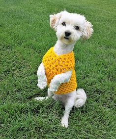 This fun bright yellow dog vest will be a great addition to your dog's spring and summer wardrobe and it will make your pup little cozier in an air-conditioned home or while walking around in cool weather.