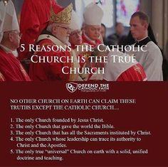 Catholic Religious Education, Catholic Catechism, Catholic Doctrine, Catholic Memes, Catholic Answers, Catholic Religion, Catholic Prayers, Catholic Saints, Christianity