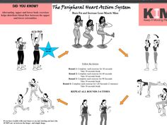 15 best pha workouts images  workout barbell squat