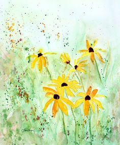 Black Eyed Susans by