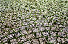 Cobblestone Driveway With Grass Bricks Showing Perspective.