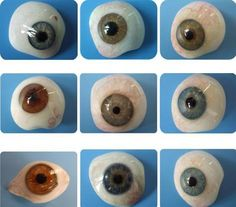 A selection of prosthetic eyes
