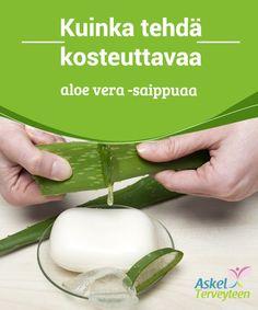 Kuinka tehdä kosteuttavaa aloe vera -saippuaa  Kaupan tekemät #saippuat saattavat kuivattaa tai ärsyttää ihoa. Siksi #kannattaa tehdä omaa saippuaa aloe verasta ja #oliiviöljystä.  #Reseptit