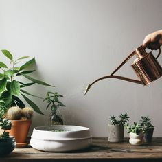 Copper Watering Can - The Future Kept