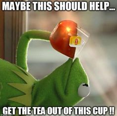 Kermit The Frog ~ But That's None If My Business