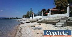 Πώς ανοίγει η πόρτα για τις αιώνιες αδειοδοτήσεις έργων στον αιγιαλό. Beach, Water, Outdoor Decor, Water Water, Aqua, Seaside