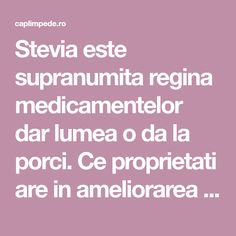 Stevia este supranumita regina medicamentelor dar lumea o da la porci. Ce proprietati are in ameliorarea diabetului si osteoporozei?   Cap Limpede Good To Know, Natural Remedies, Stevia, Health Fitness, Healthy Eating, The Body, Plant, Eating Healthy, Healthy Diet Foods