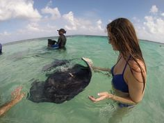 Swimming With Stingrays in Antigua - Our Empty Nest Adventures