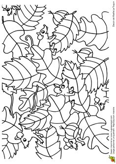 Des mulots tout joyeux qui s'amusent au milieu des feuilles mortes, coloriage pour enfants Animal Coloring Pages, Colouring Pages, Coloring Books, Fairy Coloring, Doodle Coloring, Forest Creatures, Forest Animals, Secret Garden Colouring, Hidden Pictures