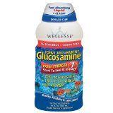 Synflex Fluid Glucosamine - http://singapore-mega.com/synflex-fluid-glucosamine/