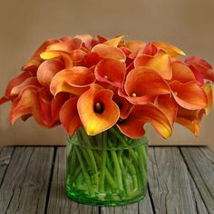 The Color Orange - My very favorite calla lillies . love the burnt orange Orange Flowers, My Flower, Fresh Flowers, Beautiful Flowers, Fall Flowers, Simply Beautiful, Colorful Roses, Exotic Flowers, Beautiful Gorgeous