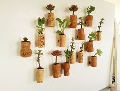 HERE'S HOW TO MAKE SUCCULENT PLANTERS WITH CORK. Bored with the typical magnets you have on your refrigerator?