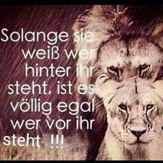 #ShareIG Mega gut #löwe #löwin #spruch #zitat #stark #woman #man #frau #mann…