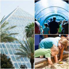 Galveston TX, Moody Gardens, Road Trip, Vacation, Living in Texas, Texan, Children, Things to do