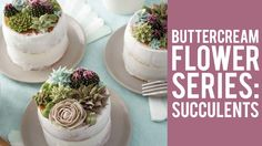 Learn how-to make 3 types of succulents in buttercream icing. Great for tea parties, birthdays, bridal showers and weddings, these stunning mini cakes are a ...