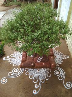 Discover the most beautiful collection of rangoli designs for Diwali. Explore unique and colorful rangoli design ideas and images for the upcoming festival. Indian Rangoli Designs, Rangoli Designs Flower, Rangoli Border Designs, Rangoli Designs Images, Rangoli Designs With Dots, Flower Rangoli, Beautiful Rangoli Designs, Rangoli Borders, Rangoli Patterns