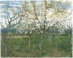 Orchard with Blossoming Apricot Trees Vincent van Gogh   Painting, Oil on Canvas  Arles: March, 1888 Van Gogh Museum  Amsterdam, The Netherlands, Europe  F: ;555, ;JH: ;1380