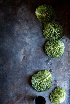 Savoy Cabbage Leaves by Nadine Greeff - Food - Stocksy United Fruit And Veg, Fruits And Veggies, Food Styling, Fotografie Workshop, Dark Food Photography, Smoke Photography, Savoy Cabbage, Food Design, Food Pictures