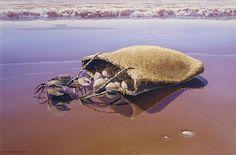 "Barry Ross Smith (New Zealand) ~ ""ebb tide"""