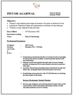 Student Resume Format Resume Formats For Fresher Engineer  Httpwwwresumecareer