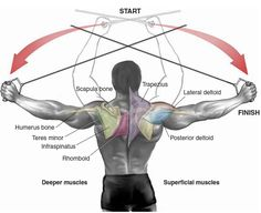 Shoulder workout need re-vamping? Check out the Shoulder exercises you don't perform anymore. Cable Workout, Gym Workout Tips, Fun Workouts, Fitness Gym, Muscle Fitness, Gym Training, Weight Training, Shoulder Mass Workout, Deltoid Workout