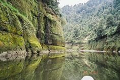 Canoeing down the beautiful bush-clad Whanganui river, North Island, New Zealand New Zealand Image, Amazing Places On Earth, Boat Tours, Kayaking, Canoeing, Australia Travel, Ecology, Mother Earth, Vacation Spots