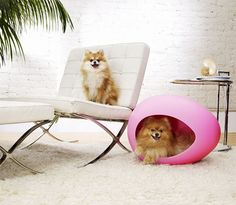 pEi Pods are stylish, durable beds for the cool Kitty and trend-setting Pup. Inspired from a hatching egg, their elliptical shape is sleek and modern offering a cave-like sanctuary for your beloved pet. Apart from providing a safe and relaxing spot for your dog or cat, these beds will add a contemporary touch to any …