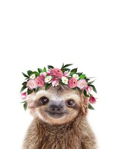 Baby Sloth With Flower Crown, Baby Animals Art Print By Synplus Carry-All Pouch . Baby Sloth With Cute Baby Sloths, Cute Sloth, Baby Otters, Baby Koala, Baby Baby, Baby Animals Pictures, Cute Animal Photos, Cute Little Animals, Cute Funny Animals