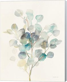 Help your wall blossom with this Metaverse Art Eucalyptus III canvas wall art. Watercolor Leaves, Abstract Watercolor, Watercolor Illustration, Watercolor Paintings, Watercolors, Plant Drawing, Painting & Drawing, Botanical Art, Canvas Artwork
