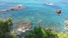 Mare _ foto: Carlotta Mantovani