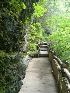 Bushkill Falls Catwalks