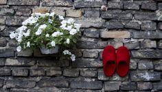 De fargerike tova tøflene Snoogas opplever byen. Bestill dine Snoogas på www.snoogas.com. Pris - 59 Eur Fashion, Moda, Fashion Styles, Fashion Illustrations