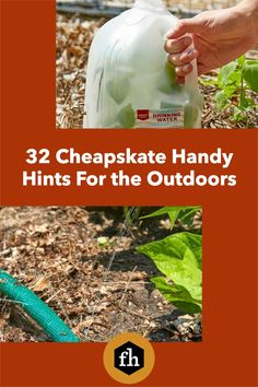 Save those milk jugs, soda cans, pool noodles and other things around your house you thought were useless. Think again! Give them a new life outdoors with these genius ideas. Pipe Insulation, Milk Jugs, Pool Noodles, Buying A New Home, Lawn And Garden, Drinking Water, Organization Hacks, Gardening Tips, Need To Know