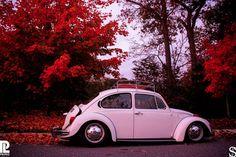 Slammed Volkswagen Beetle