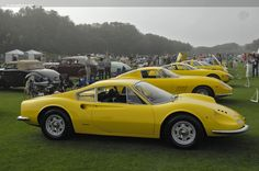 In A World Of Exotics Yellow Has A Place Of Its Own. «