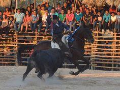 PeninsulaTaurina.com : Ayala da una vuelta al ruedo en Buctzotz