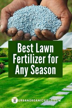When and how do you fertilize your lawn? Do you use liquid or granular fertilizer? and which is better on lawns? In this article, we discuss tips and benefits of granular versus liquid fertilizer for your lawn. #Landscaping #Lawn #LawnCare #FertilizeLawnTips #Gardening #UrbanOrganicYield