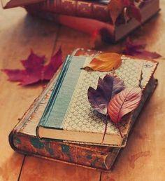Tehlikeli sayılmam artık Kalbimi kalın bir kitabın arasında kuruttum…  Didem Madak