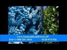 バイオフォトニックスキャナー, 寄生防止, ellagi-C, 抗酸化化合物, 細菌やウイルス感染, 膣内イースト菌感染症のホーム救済