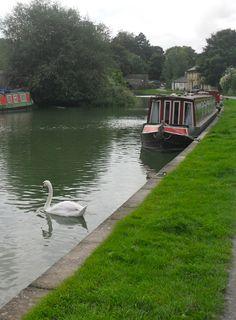 The canal near Sydney Gardens.