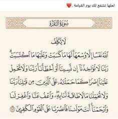 Quran Arabic, Islam Quran, Arabic Quotes, Islamic Quotes, Losing Hope, Coran Islam, Remember Why You Started, Prayer Book, Quran Verses