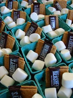 s'mores ingredients in berry baskets for dessert at parties and dinners Sleepover Party, Slumber Parties, Birthday Parties, Bonfire Birthday Party, Birthday Ideas, Berry Baskets, Camping Parties, Snacks Für Party, Party Desserts